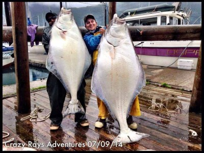 Halibut Pictures