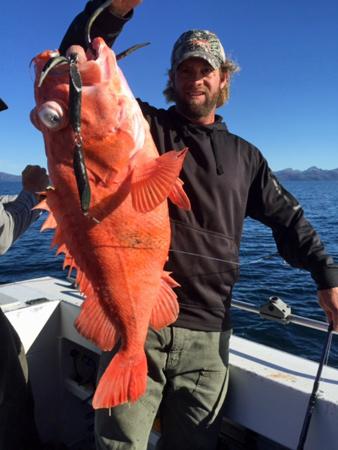 Alaska-Rockfish-fishing-in-Whittier-5